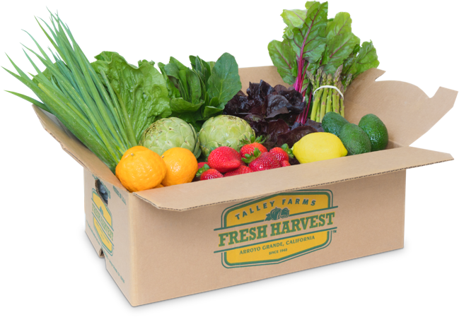 Talley Farms Fresh Harvest box brimming with produce